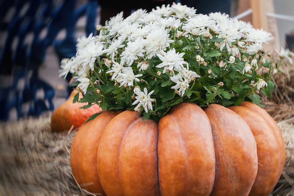 https://30seconds.com/mom/tip/5030/Creative-Fall-Decor-How-to-Combine-Pumpkins-Mums-for-Autumn-Decorating